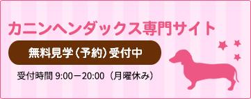 カニンヘンダックス専門サイト無料見学(予約)受付中受付時間 9:00~20:00(月曜休み)